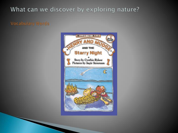 what can we discover by exploring nature vocabulary words n.