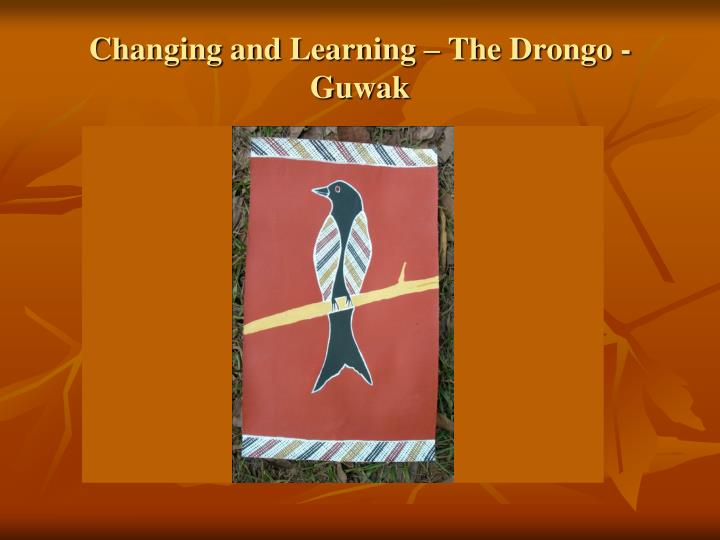 Changing and Learning – The Drongo - Guwak