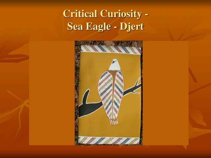 Critical Curiosity -