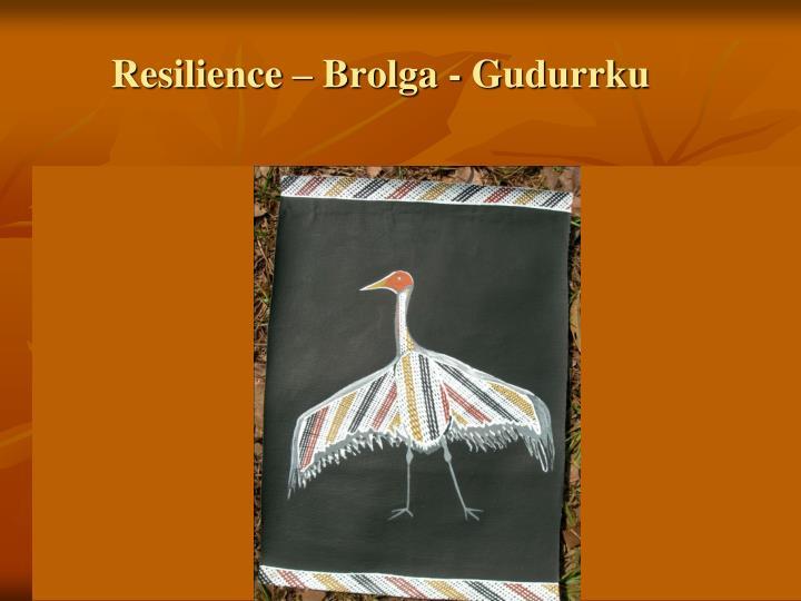Resilience – Brolga - Gudurrku