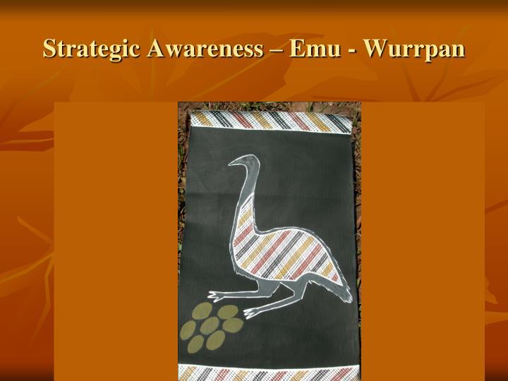 Strategic Awareness – Emu - Wurrpan