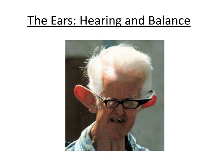 the ears hearing and balance n.