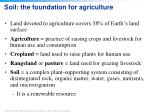 soil the foundation for agriculture