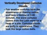 vertically developed cumulus clouds
