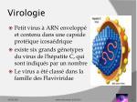 virologie