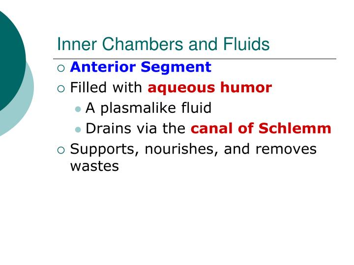 Inner Chambers and Fluids