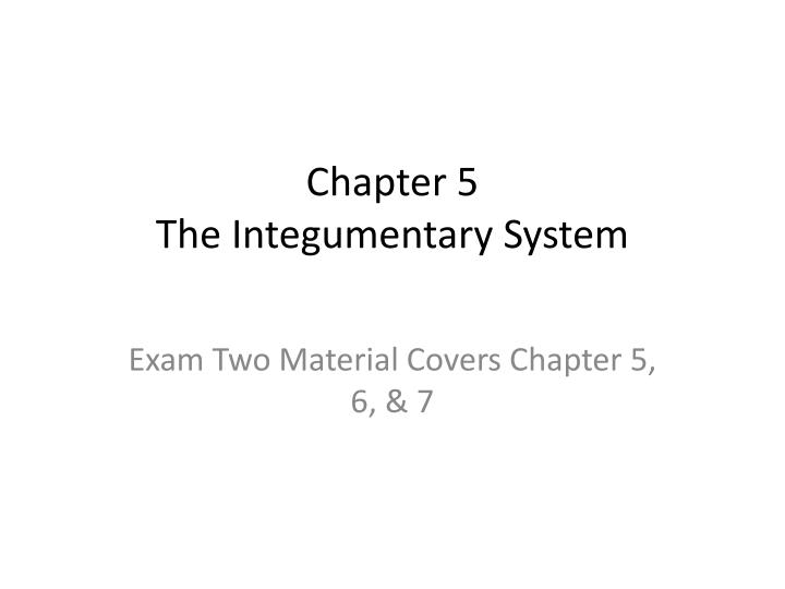 chapter 5 the integumentary system n.