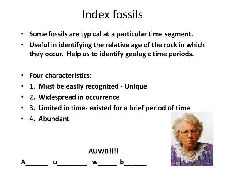 index fossils n.