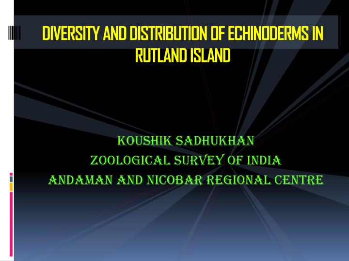 diversity and distribution of echinoderms in rutland island n.