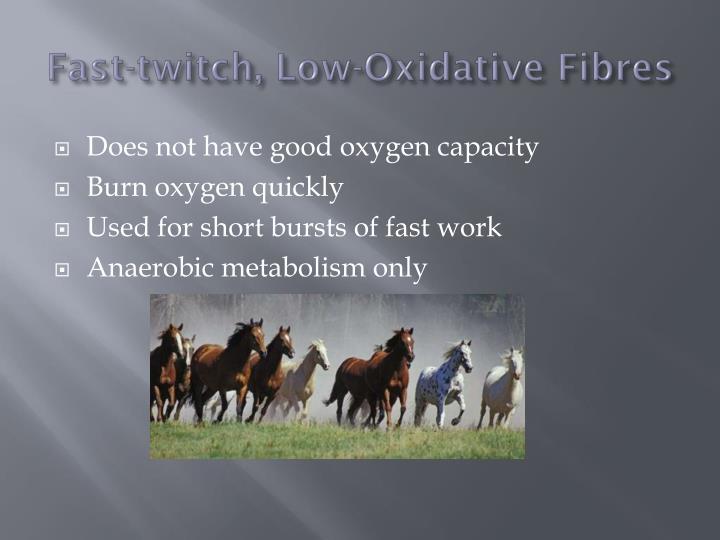 Fast-twitch, Low-Oxidative
