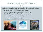 partneriaeth gyda cilt cymru