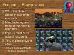 economic powerhouse