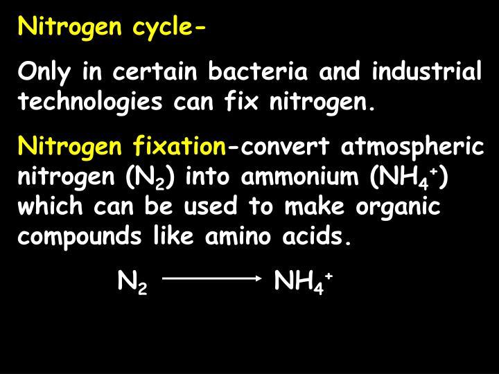 Nitrogen cycle-