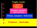 trophic levels2