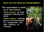 what do you mean by environment