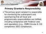 primary grantee s responsibility