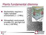 plants fundamental dilemma