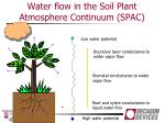 water flow in the soil plant atmosphere continuum spac