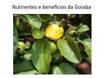 nutrientes e benef cios da goiaba