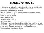 plantas populares