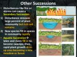 other successions