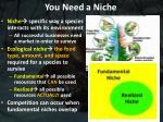 you need a niche