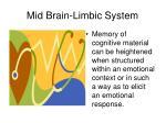 mid brain limbic system1