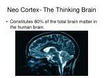 neo cortex the thinking brain