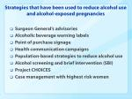 strategies that have been used to reduce alcohol use and alcohol exposed pregnancies