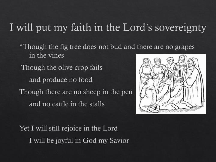 I will put my faith in the Lord's sovereignty