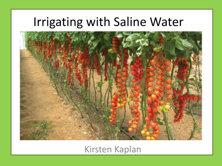 irrigating with saline water n.
