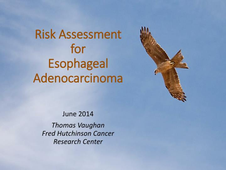 risk assessment for esophageal adenocarcinoma n.