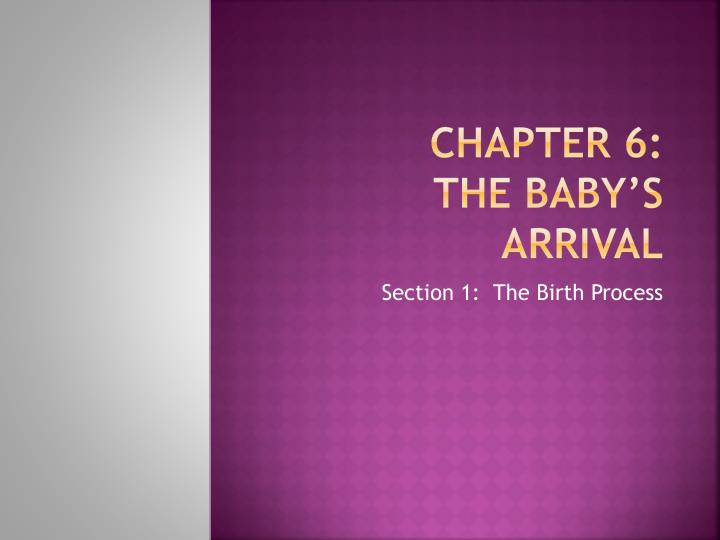chapter 6 the baby s arrival n.