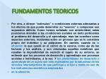 fundamentos teoricos3