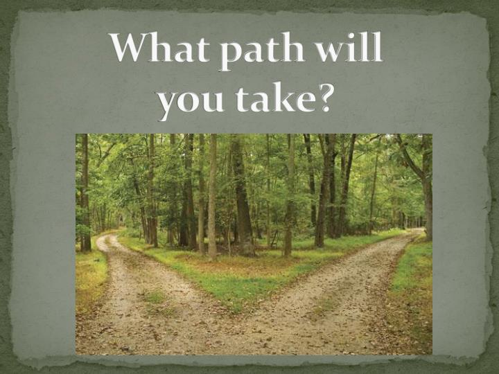 what path will you take n.