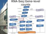rna seq gene level counts