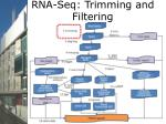 rna seq trimming and filtering