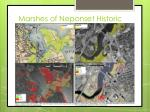 marshes of neponset historic
