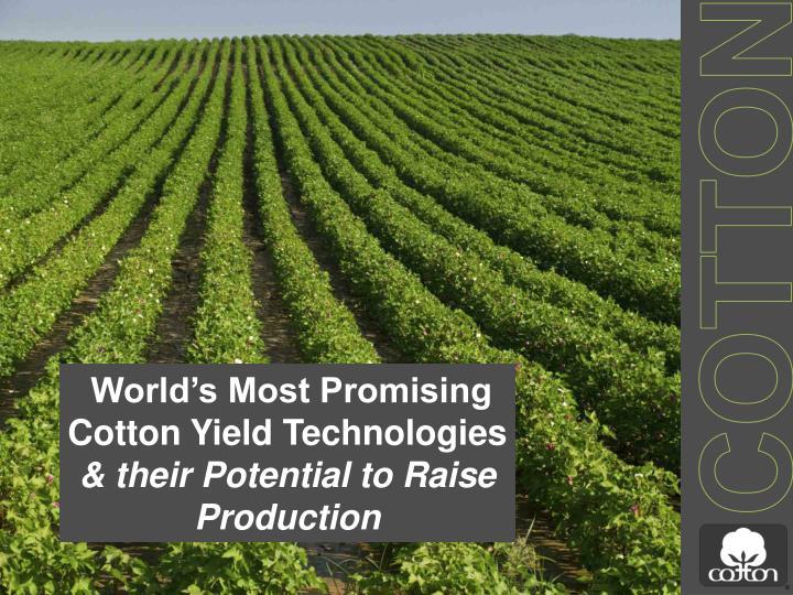 world s most promising cotton yield technologies their potential to raise production n.