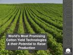 world s most promising cotton yield technologies their potential to raise production