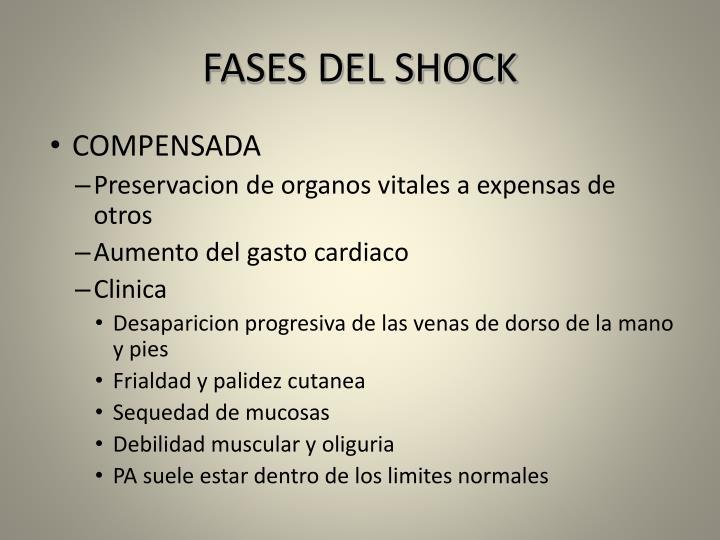 FASES DEL SHOCK