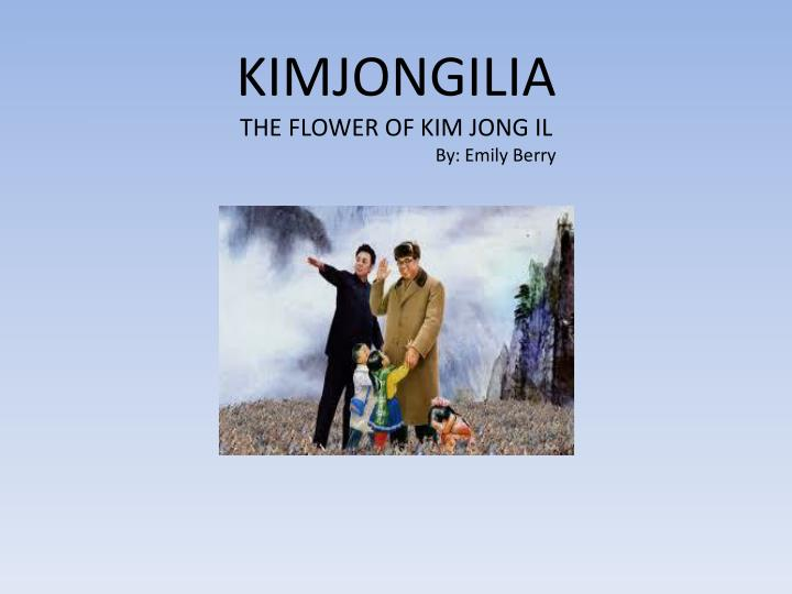 kimjongilia the flower of kim jong il by emily berry n.