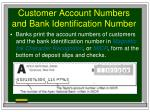 customer account numbers and bank identification number