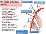 branches of axillary artery