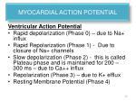 myocardial action potential1