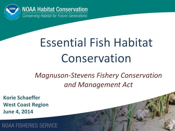 essential fish habitat conservation n.