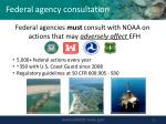 federal agency consultation