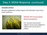 step 3 noaa response continued