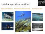 habitats provide services