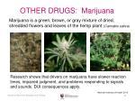 other drugs marijuana